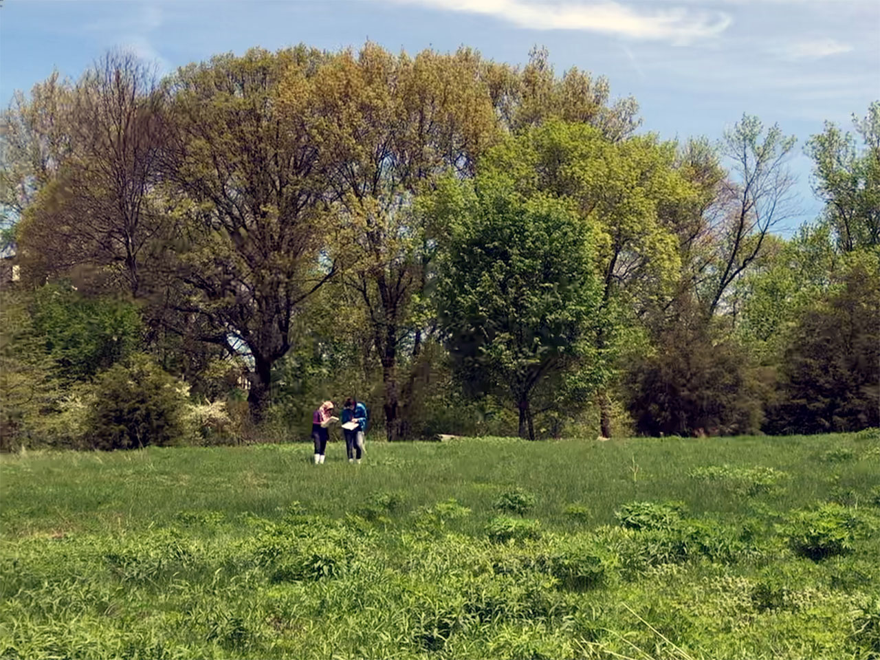 A verdant field surrounded by trees dwarfs an adult and child with sketchbooks